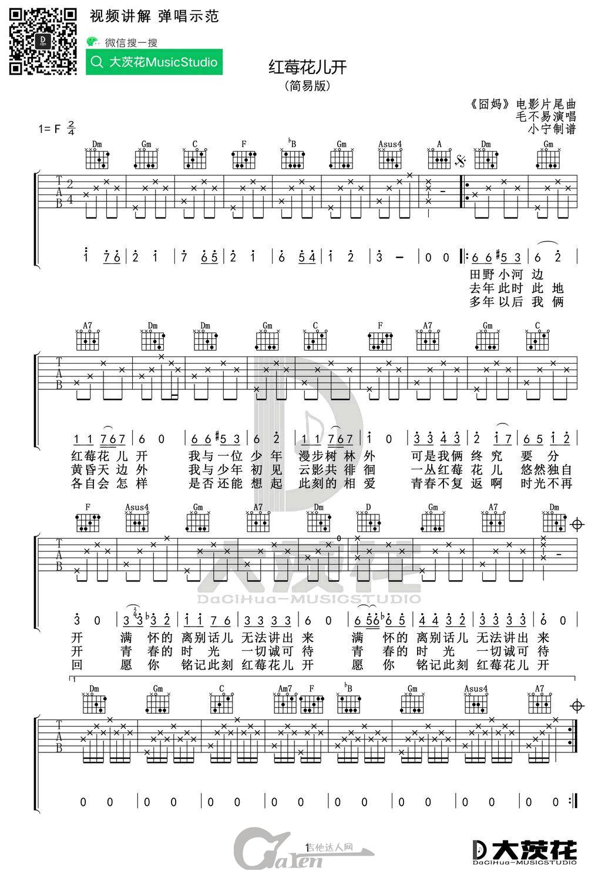 毛不易《红莓花儿开》F调吉他谱_吉他教学视频_吉他达人网